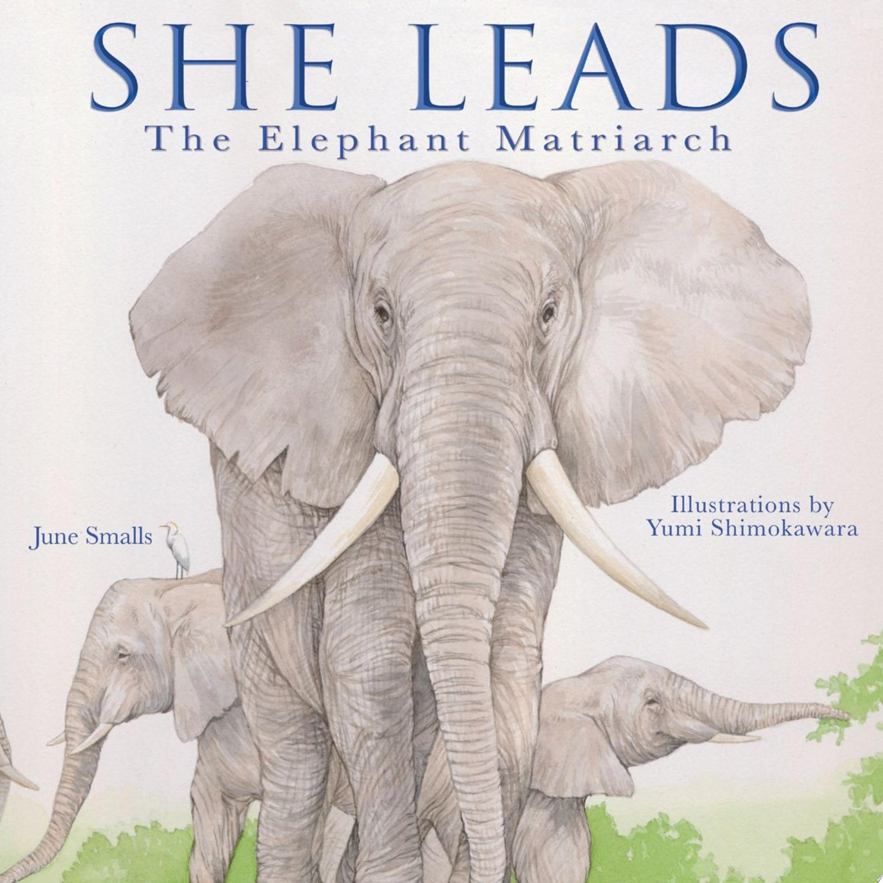 "Image for ""She Leads"""