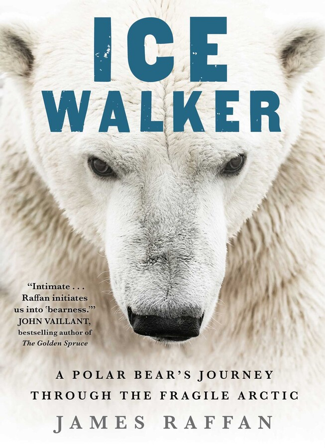 "Image for ""Ice Walker"""