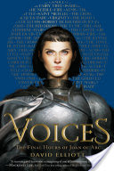 Cover image for Voices